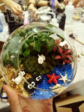 DIY  terrarium glass globe hong kong groupon object review 香港 玻璃盤景 團購